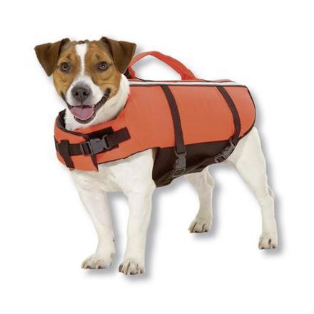 gilet de sauvetage pour chien