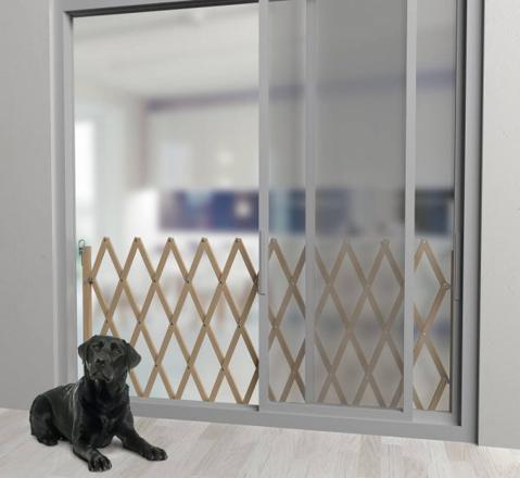 barriere pour chien